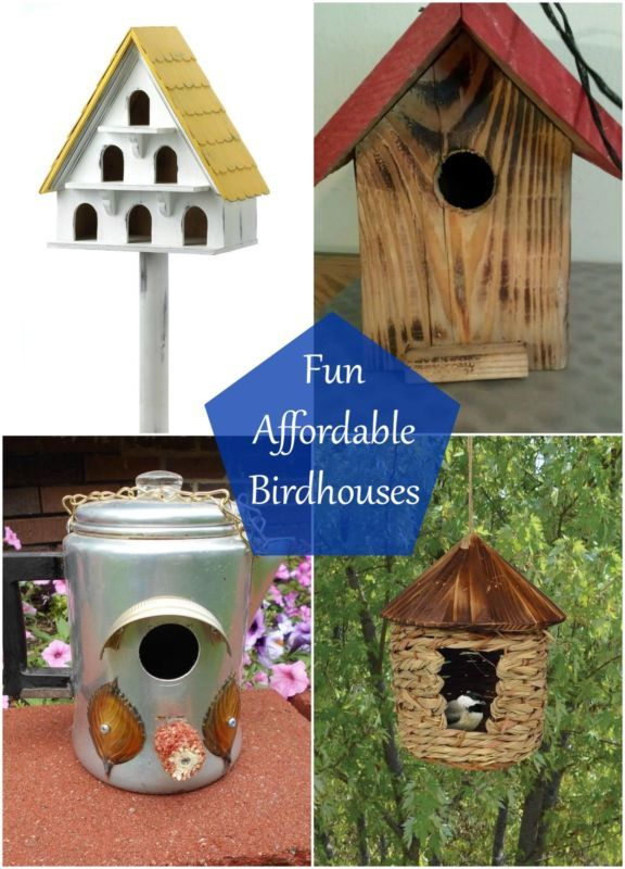 38 best images about bird box on pinterest plant pots for Types of birdhouses for birds