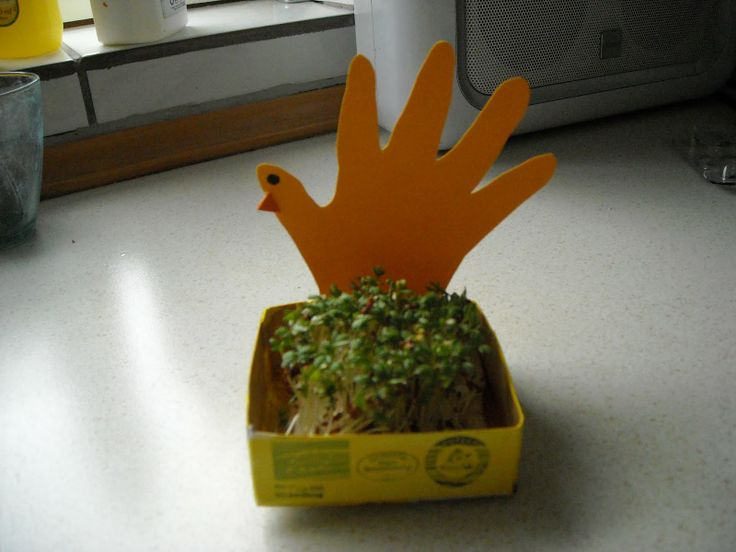 Lagde kyllingene på pinne istedenfor. Til blomsterpotter:-)