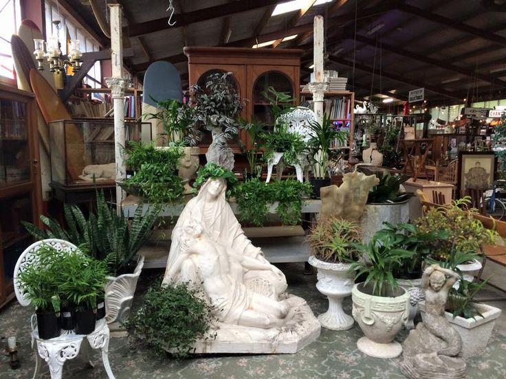 Indoor Garden at J&D