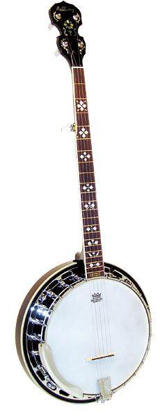 Ashbury AB-45 5 str Banjo at Hobgoblin Music