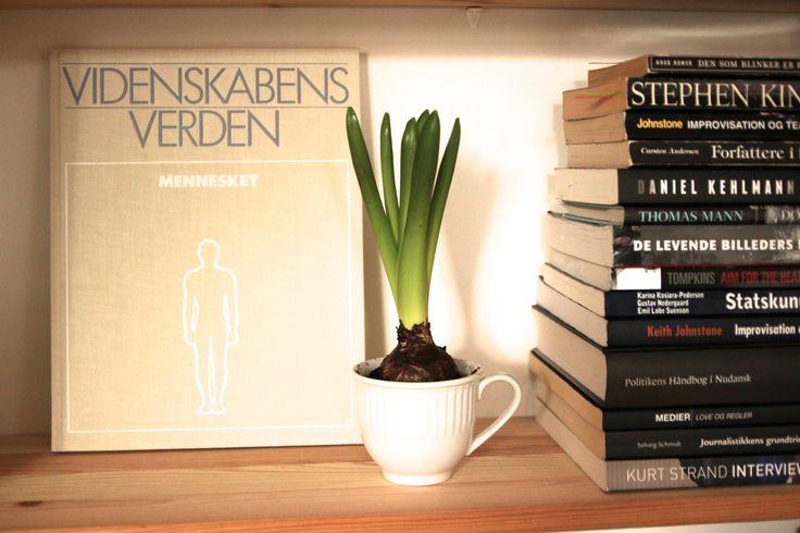 Videnskabens Verden på bogreol.