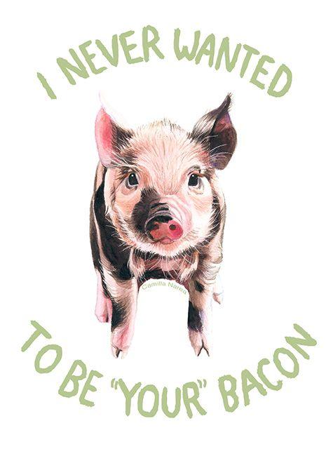 Camilla Narea Illustration • Pigs never have a choice. You do.  (Artwork:...