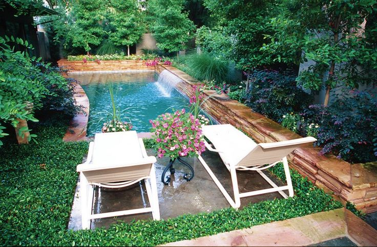 Small pool or plunge pool in an urban backyard in Dallas, Texas designed by Bonick Landscaping.