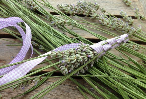 """Jedes Jahr im Juni/Juli nehme ich mir die Zeit, diese schönen duftenden Lavendelstäbe zu basteln. Dies lädt ein zur Meditation und zugleich verströmt der Lavendel seinen beruhigenden und kraftspendenden Duft. Jedesmal aufs neue eine schöne Auszeit! Mit diesen dekorativen Lavendelstäben holen Sie sich den Lavendelduft fürs restliche Jahr in Ihr Haus, Schrank, Badezimmer und sind zugleich ein wunderbar """"duftes"""" Geschenk."""