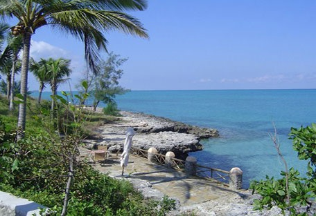 #mozambique #quirimbasarchipelago #beachholiday #destination #honeymoon #islandparadise #romance #relax #ocean #scubadive #marinereserve #conservation #matemoisland #vamiziisland