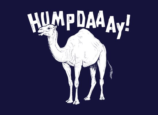 Hump Day! Funny camel inspired graphic t-shirt for Hump Day.