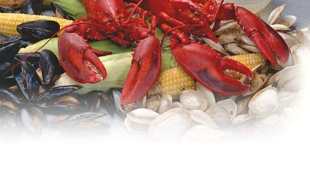 Lynn Crawford, Mark McEwan highlight Fall Flavours 2014 http://www.cbc.ca/news/canada/prince-edward-island/lynn-crawford-mark-mcewan-highlight-fall-flavours-1.2651012