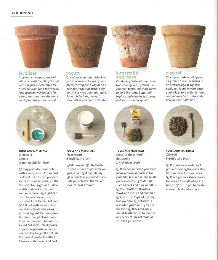 Patinando macetas de terracota huertas y jardines - Macetas de terracota ...
