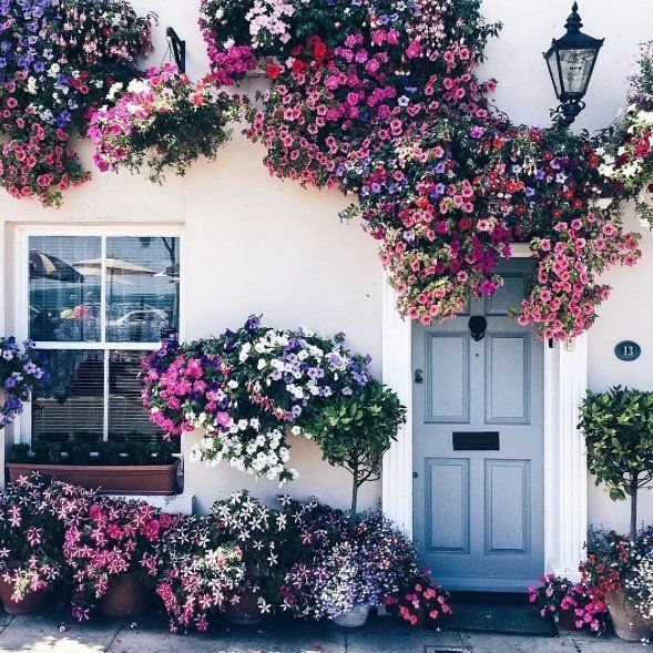 Flowers at the door