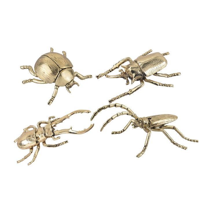 These electroplated decorative silver and gold insects are great tabletop accessories to add a little eclectic glam to a room setting https://joyfulhomegoods.com/collections/accessories-1/products/lazy-susan-hand-forged-gold-insects-165-001-s4?variant=20307112583 Free gift for our Pinterest fans! $5 gift card, use code PIN5 to redeem!