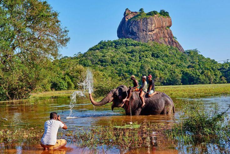 Шри-Ланка – настоящая жемчужина Индийского океана и страна, полная сюрпризов. Если вы решили путешествовать по Шри-Ланке, вас ожидаюткрасивые пейзажи, вкусная …