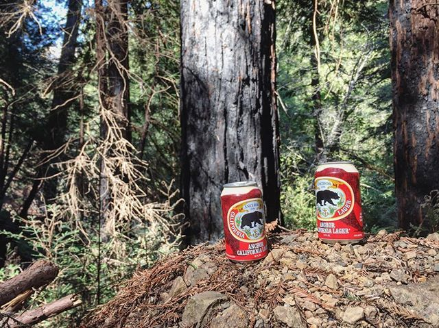 Big Sur hike rewards, thanks to @anchorbrewing & their California Pilsner. While the Highway 1 closure might have put a bit of a detour on our coastal drive, it still didn't stop us from making the drive down the Redwoods to Big Sur for some beers and hiking before heading black north. Cheers. . #anchorbrewing #cabeers #cabeer #calibeer #bigsur #redwoods #highway1 #californiabeer #draftgram #beergram #thehopreview #hiking #montereylocals - posted by The Hop Review…
