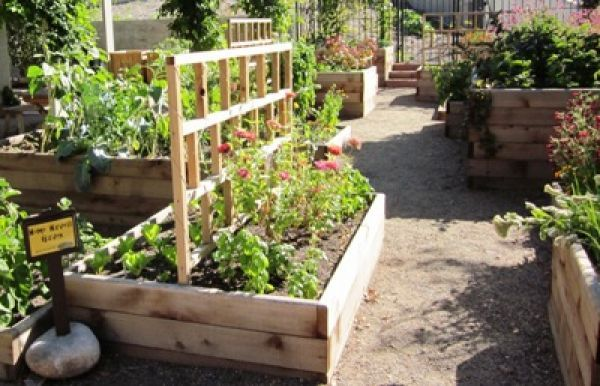 An unusual take on raised beds means planting space for gardeners at every level.