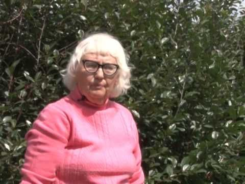 Выращивание тыквы. Надкусывать семена при проращивании