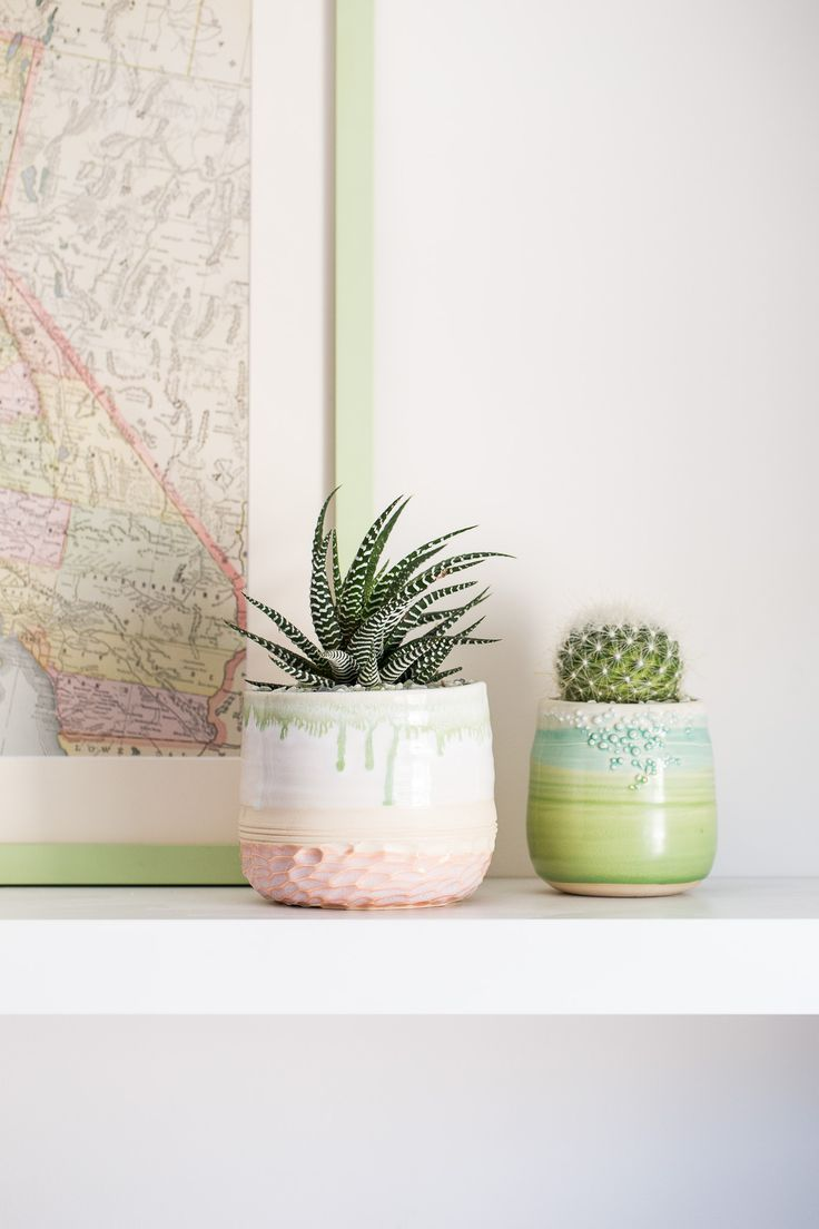 34 best home is where the jungle thrives images on for Indoor house plants low maintenance