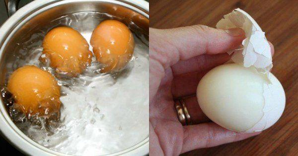 Ne jetez plus vos coquilles d'œufs ! Quand vous aurez lu ça, vous serez surpris...