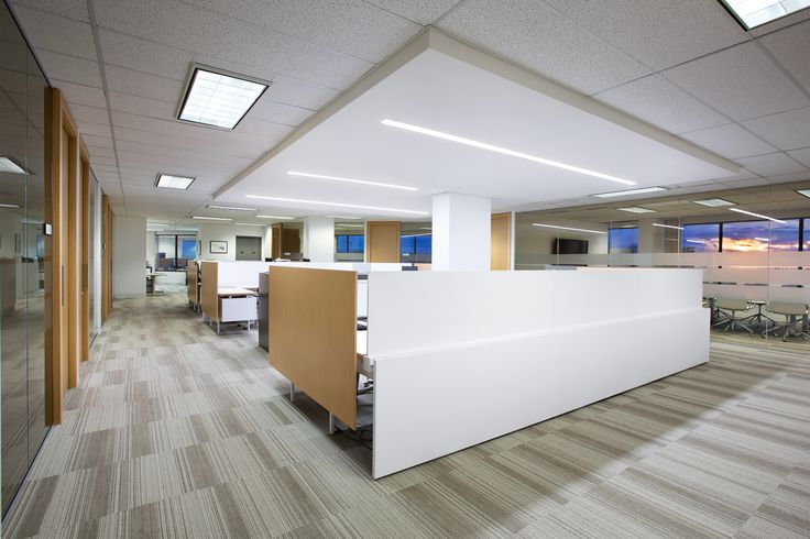 SSDG Interiors Inc.   workplace executive office: Financial Institution. Bright and modern interior design of an office in Vancouver with white and wood workstations, wood & glass office walls, and grey carpet tile.