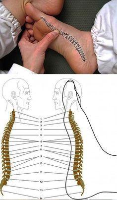 Мобильный LiveInternet Как снять боль в спине при помощи стопы? | Планета_Здоровье - Советы и рецепты для Вашего здоровья |