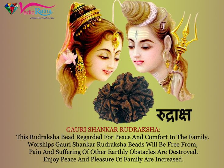 Gauri Shankar Rudraksha helps to enjoy a blissful Married Life, is recommend for both Husband and wife to solve marriage issues.