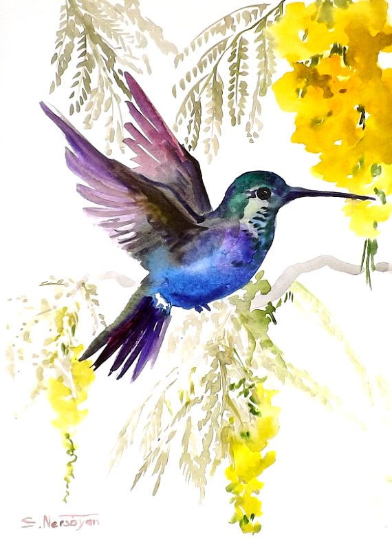 Hummingbird, original watercolor painting, 9 X 12, tropical birds birds and flowers, yellow blue green via Etsy