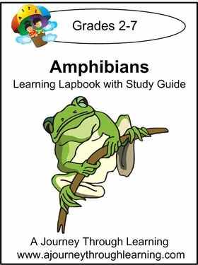 Reptile and amphibian study guide Questions and Study ...