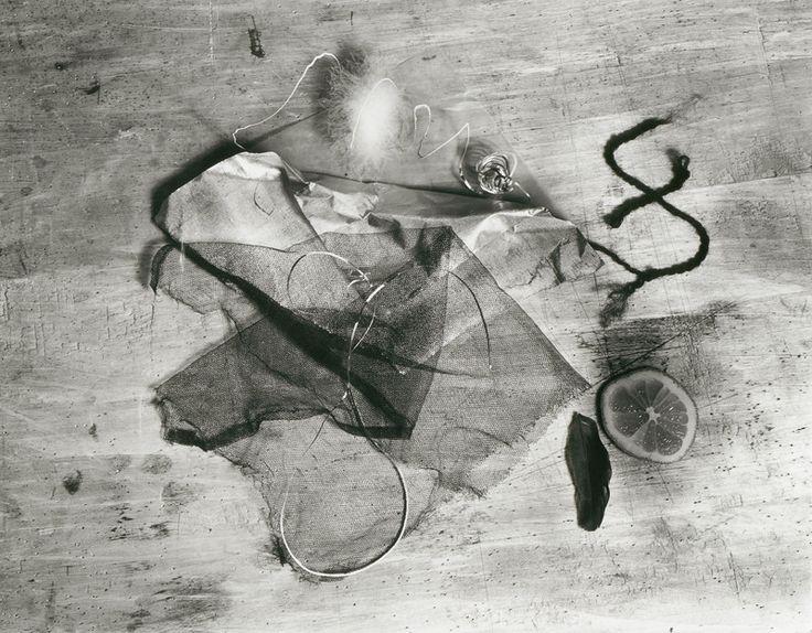 "gacougnol: "" Walter Peterhans Ophelia still life with lemon slice, tulle and feathers c. 1929 ( modern print c. 1966) """
