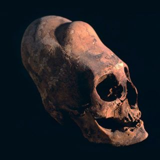 DNA test results: Paracas skulls are not human