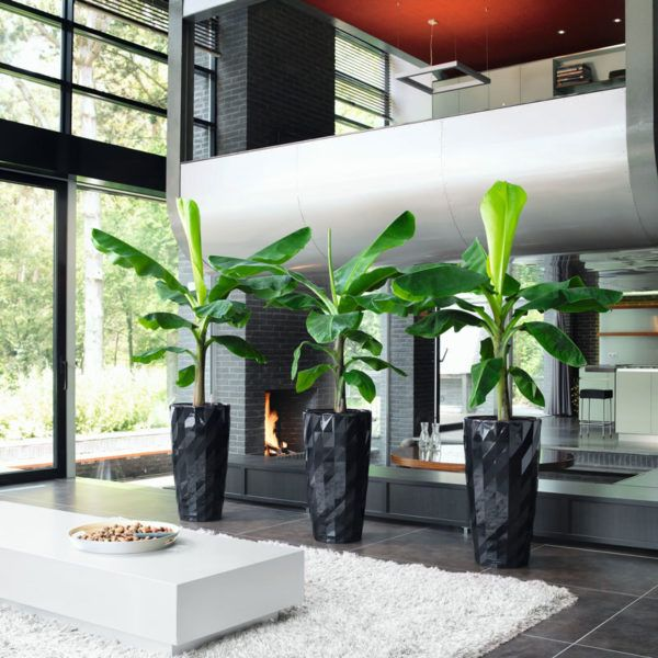 DIAMANTE's unique surface structure featuring a high-gloss finish reveals the planter's multifaceted personality from every angle. DIAMANTE's diversity and expressiveness make it ideal for both tall and exotic plants – and, arranged in an ensemble. It can bring even austere surroundings to life. This expressive planter also features a unique sub-irrigation system that takes care of your plants for you for up to 12 weeks.
