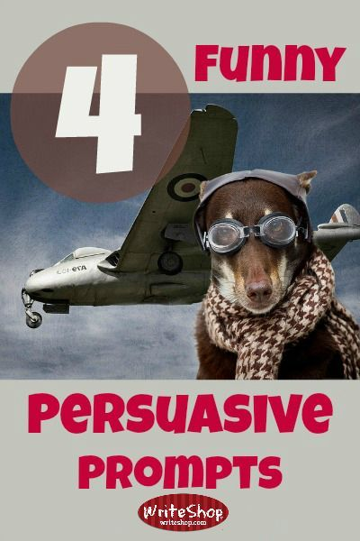 Persuasive essay writing prompts
