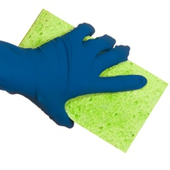 What's The Difference Between Cellulose Sponges And Those Other Awesome Kitchen Sponge 2018
