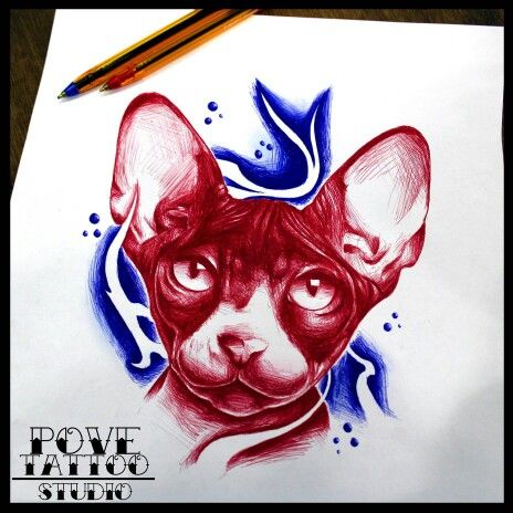GATO EGIPCIO A BOLI BIC  #povetattoostudio #tattoo #tattoocircle #inkcopious #tattooednaked #tattedskin #tatuaje #ink #inked #bolibic #portrait #retrato #bic #girltattoo #guytattoo #girlswithink #guyswithink #inkedgirls #inkedman