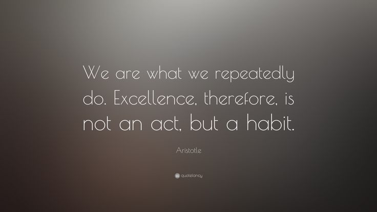 """We Are What We Repeatedly Do."" -- Aristotle"