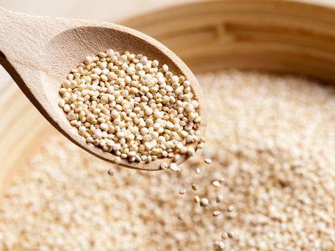Komosa ryżowa - roślina o niezwykłych właściwościach odżywczych