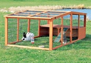 Proverbs 31 Woman: An Introduction to Raising Rabbits for Meat