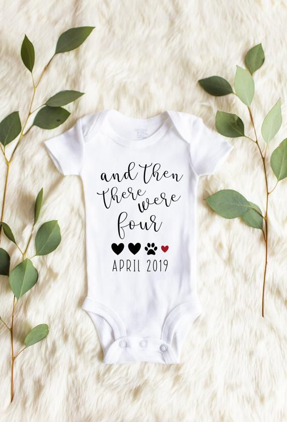 And Then There Were Four, Pregnancy Announcement Onesie, Baby Announcement Onesie, Pregnancy Announcement, Announcement Onesie, Dog, Custom – lady bug