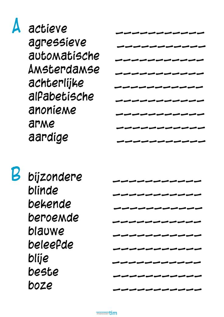 Mijn bijzondere bijvoeglijk naamwoorden boek - Meestertim.nl