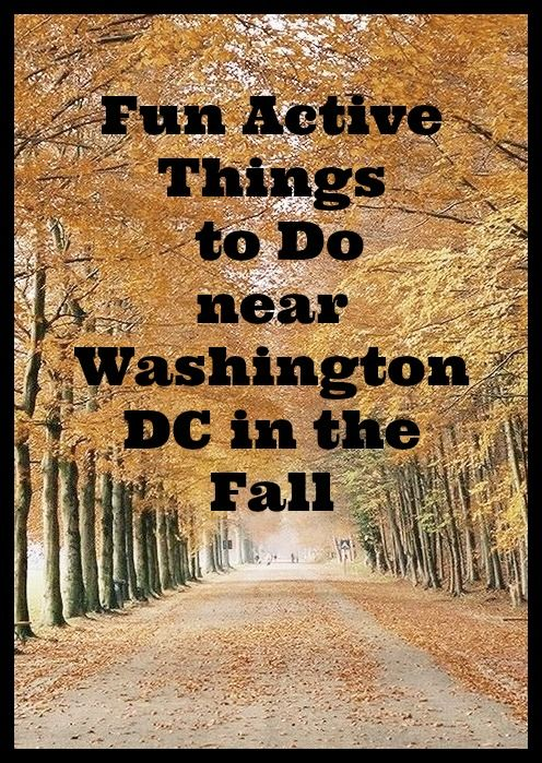 Fun Active Things to Do in Washington DC in the Fall