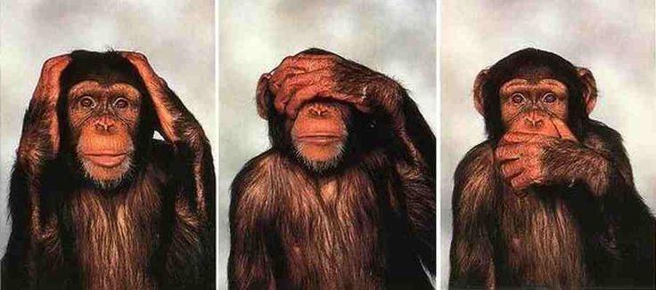 Les singes de la sagesse sont au nombre de trois, dont chacun se couvre une partie différente du visage avec les mains : les oreilles, les yeux et la bouche. De gauche à droite, Kikazaru (le sourd), Mizaru (l'aveugle), Iwazaru (le muet).