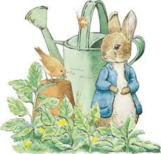 desenho pitty rabbit - Pesquisa Google