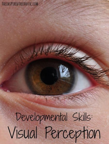 When most people think about visual skills, they think about how well a child can see, or visual acuity.  But there are a whole slew of other skills – visual perceptual skills – that help kids make sense of what they see.