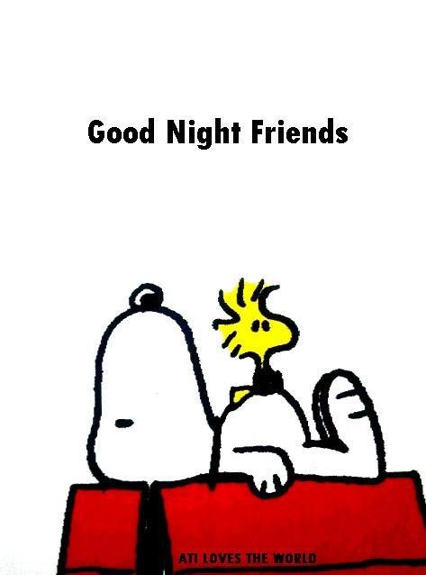 {*} GOOD NIGHT! Good night everyone! Sweet dreams don't lose hope! Love ya!! :b :)