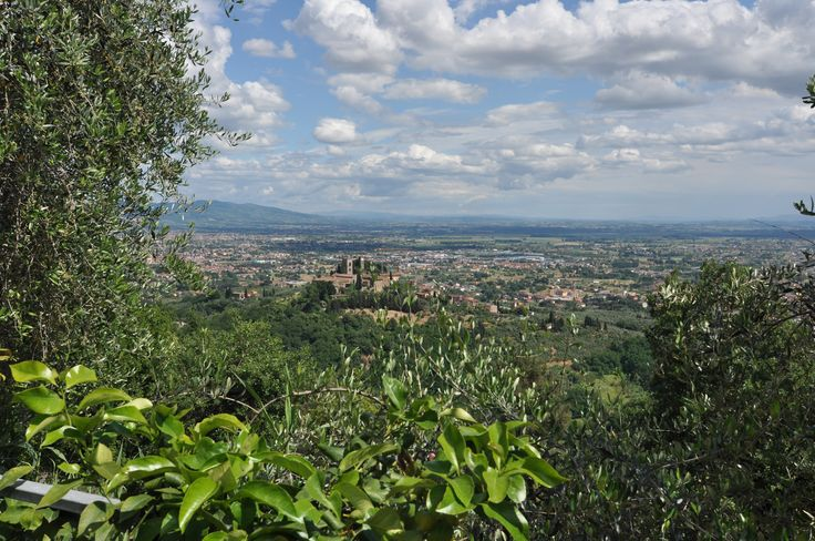 Lemon trees, orange trees, sun and panoramic view of castle Buggiano