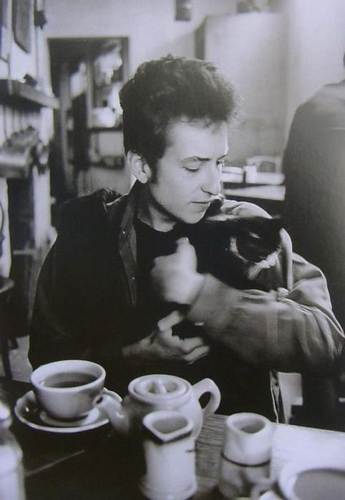 Bob Dylan, coffee and cat.