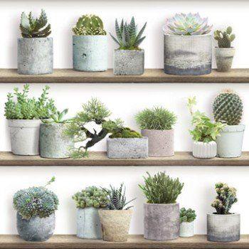 Best 25+ Maceteros Leroy Merlin Ideas On Pinterest | Jardineras