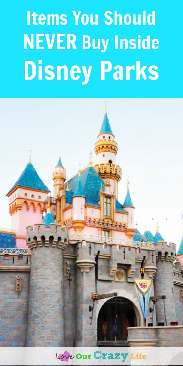Planning a Disney vacation? Here are some items you should bring with you and…
