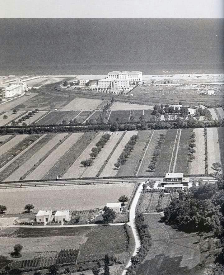 Cattolica 1953