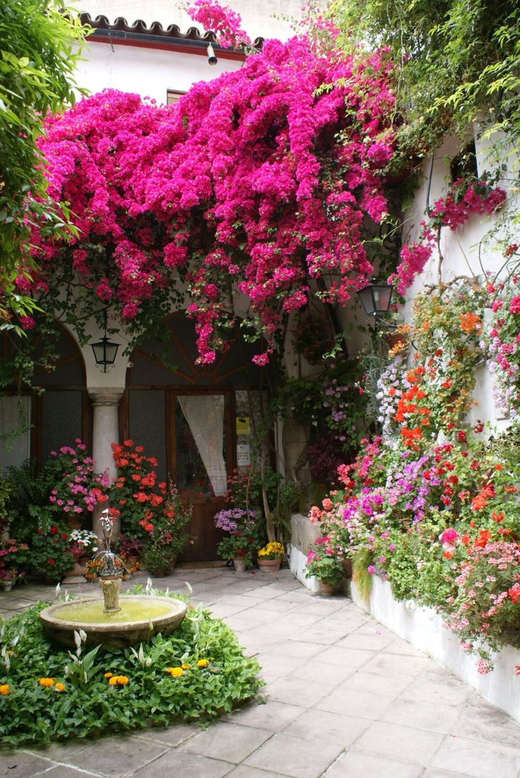 Gorgeous Mediterranean-inspired coutrtyard, cloaked in hot pink blooming bougainvillea.