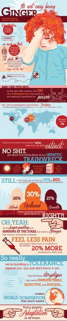 Infographic Facts About Gingers - Humors Chart All About Red Heads