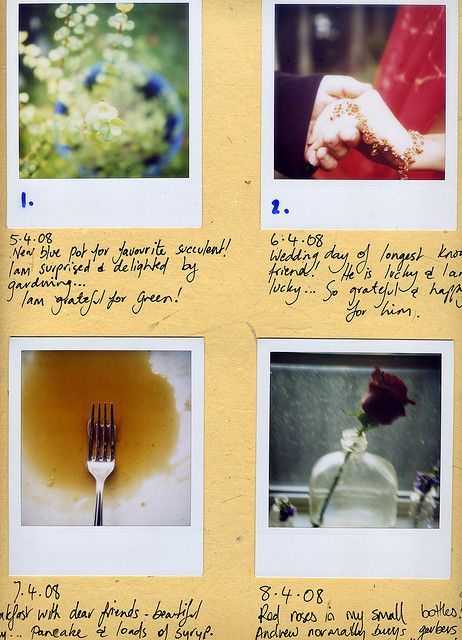 365 days of grateful by poppy: smiles: 'A series i started looking and photographing with my Polaroid (sx-70 using 600film) something every day i am grateful for....' #Photography #Gratitude