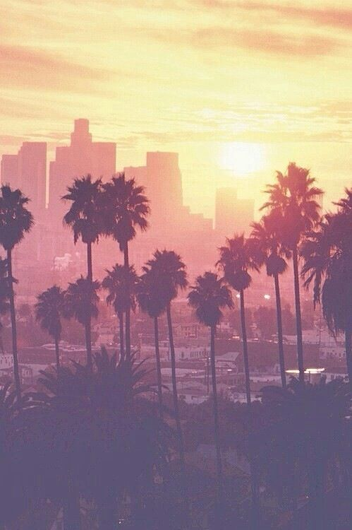 Los Angeles...summer...palms...sunset